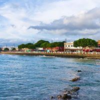 Napili Point Resort logo