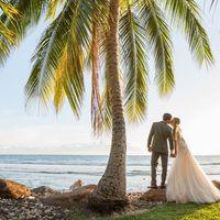 Tropical Maui Weddings logo