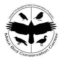 Maui Bird Conservation Center logo