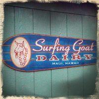Surfing Goat Dairy logo