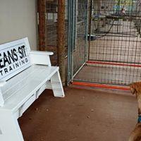 Sit Means Sit Dog Training logo