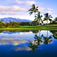 Maui Nui Golf Club logo