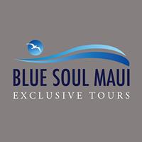 Blue Soul Maui logo