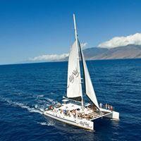 Alii Nui Sailing Charters logo