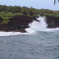 Adventure Maui Road To Hana Tour logo