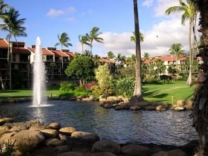 Handyman Services Of Maui logo