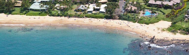 Maui Tropical Rentals logo