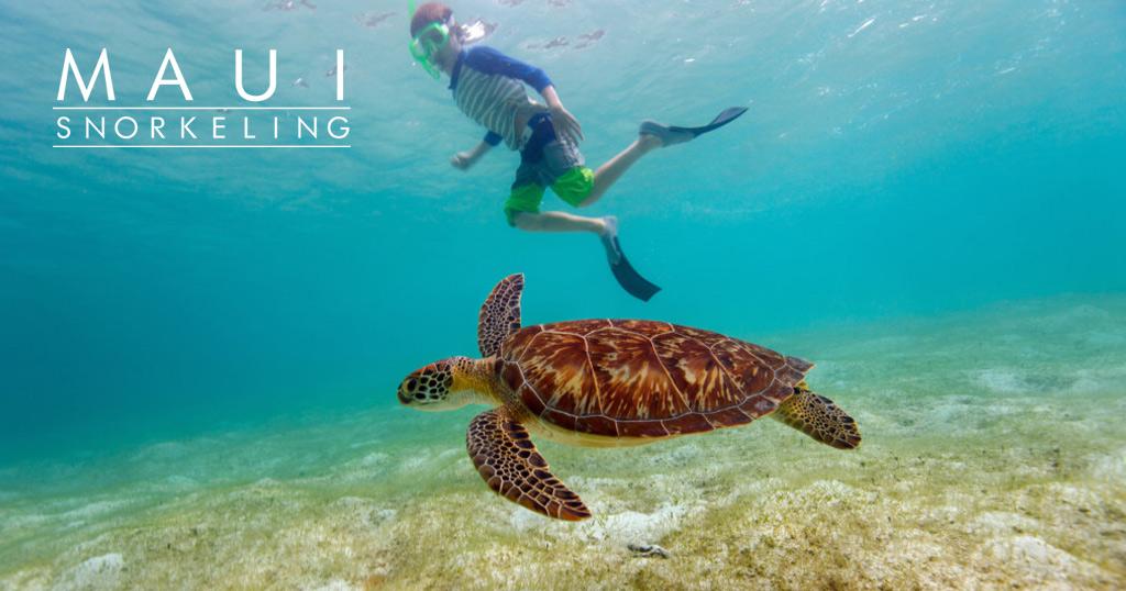 Maui Snorkeling Lani Kai logo