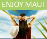 Maui Chamber of Commerce logo