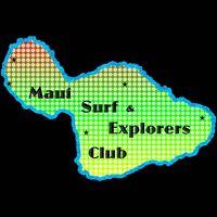 HI Surf Club logo