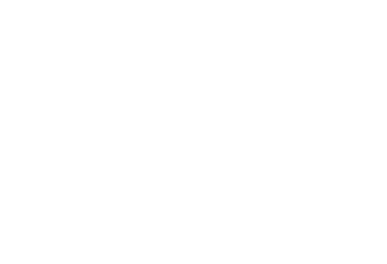 Pueo Creations Website Design & Marketing logo