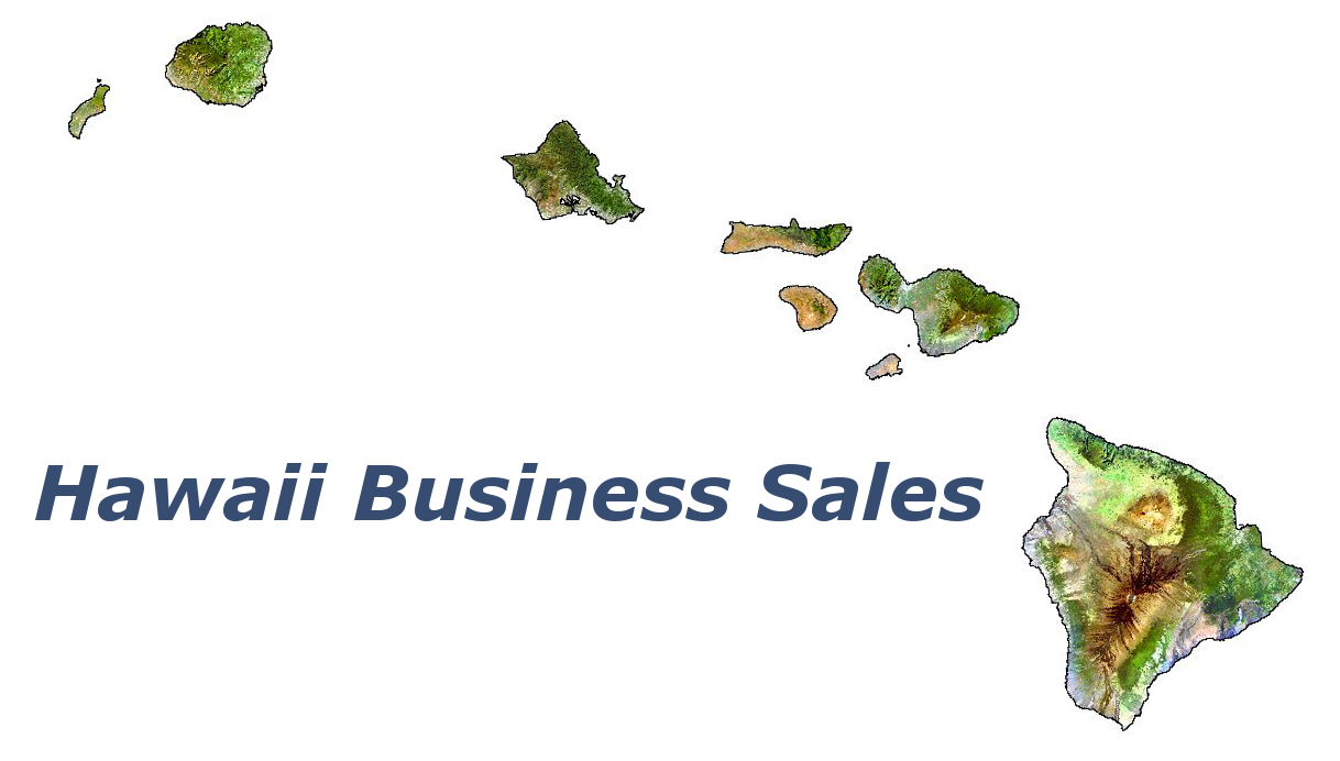 Hawaii Business Sales logo