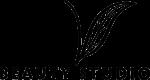 v beauty studio maui logo
