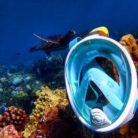 Makai Snorkel logo