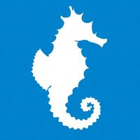 The Snorkel Store logo