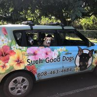 Such Good Dogs logo