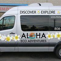 ALOHA ECO ADVENTURES INC logo