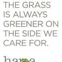 Hapa Landscaping logo