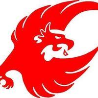 Phoenix Security Hawaii logo