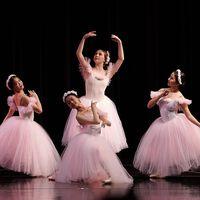 Hawaii State Ballet logo