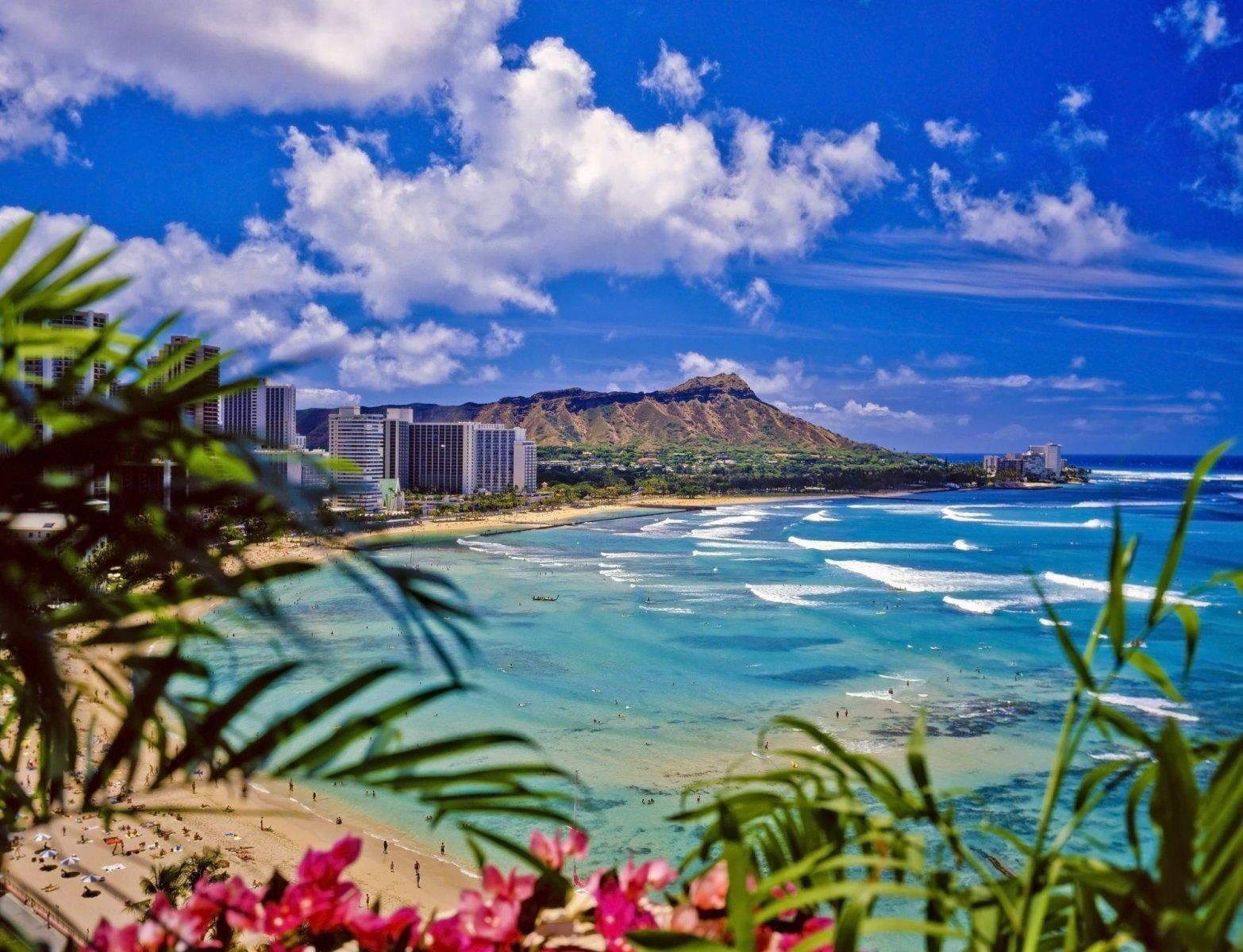 Hawaii Cash Home Buyers logo