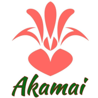 Akamai Foot Doctor (Hawaii Kai Location) logo