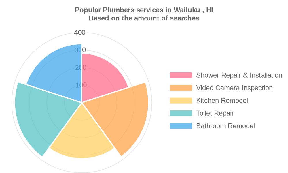 Popular services provided by plumbers in Wailuku , HI