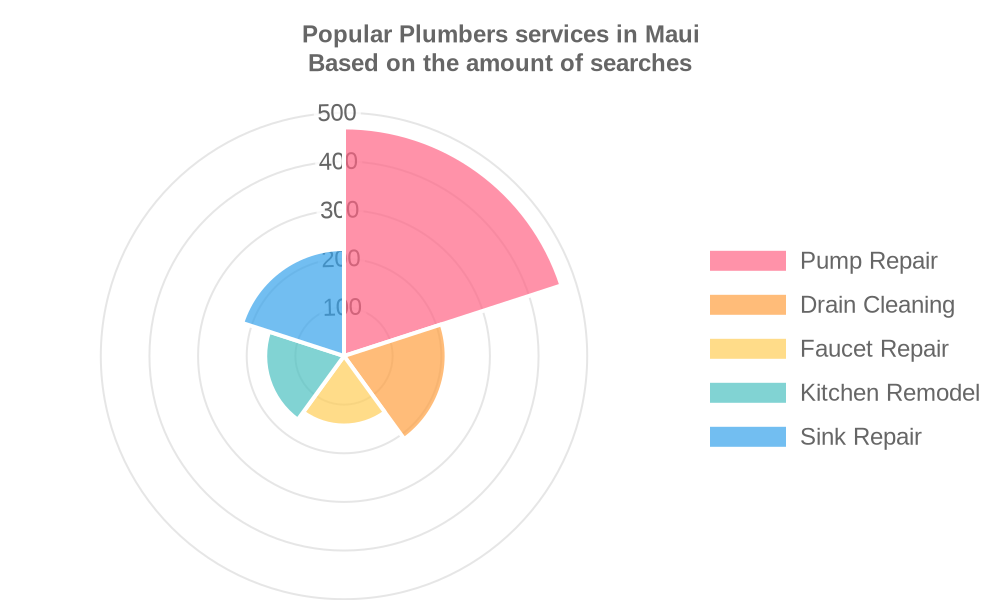 Popular services provided by plumbers in Maui